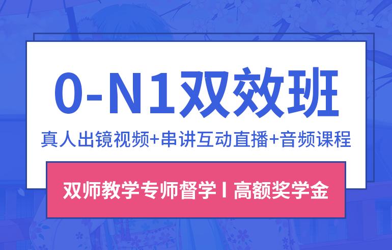 0-N1双效班+20节一对一考试辅导VIP在线提分课程