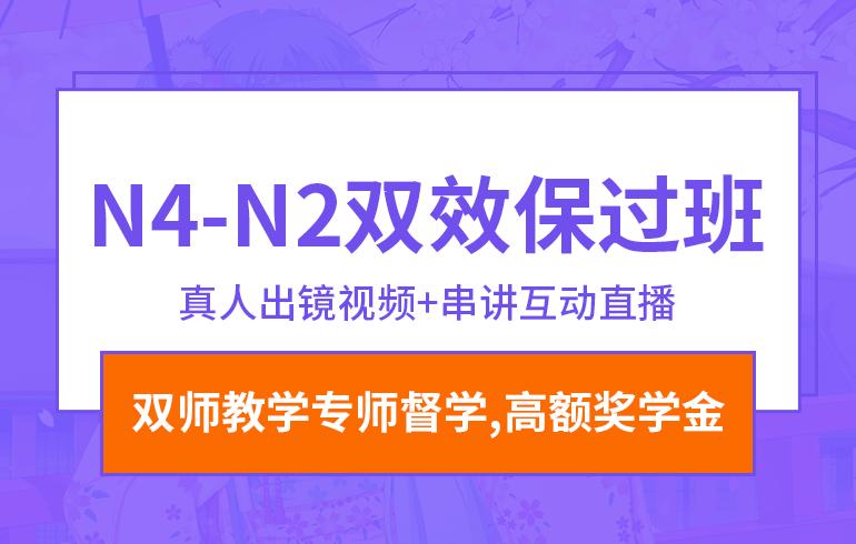 N4-N2双效保过班